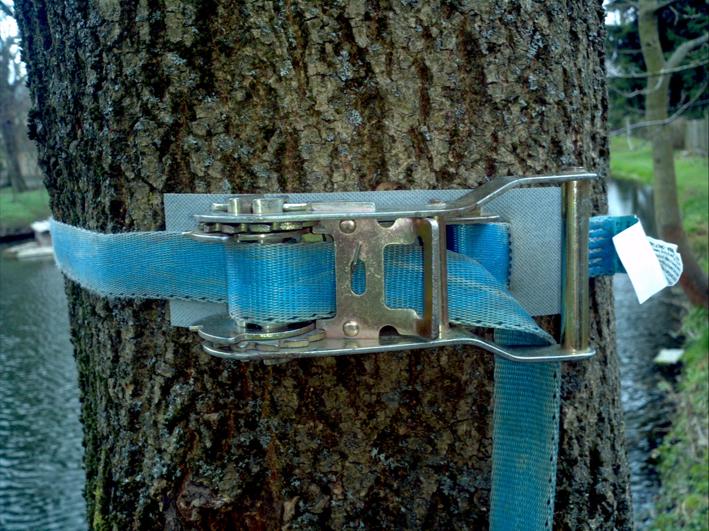 Baum Kletter Gurt : An bäumen klettern u2013 blog.outside aktiv.de